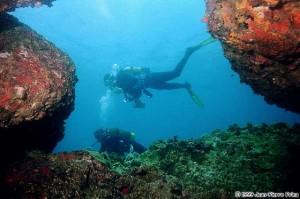 Snorkling Nha Trang
