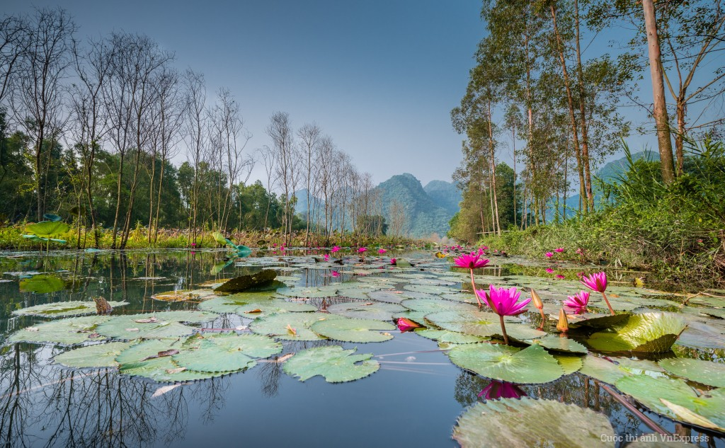 Perfume Pagoda, Huong Pagoda, Yen Stream